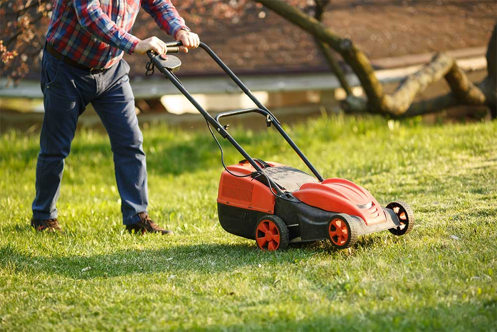 tasks lawn care business software can automate