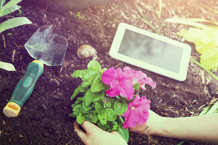 landscaping software must haves