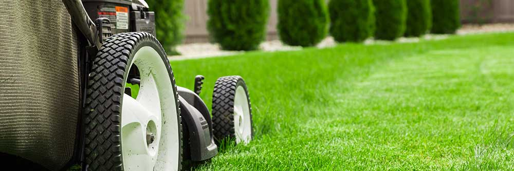 Commercial Lawn Care Business Accounts