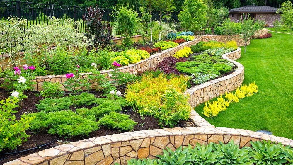 Landscape Design Techniques