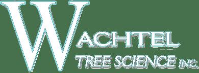 logo Wachtel white